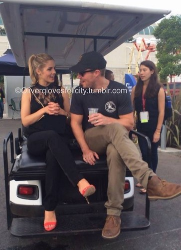 Stephen Amell & Emily Bett Rickards fond d'écran entitled Emily and Stephen at SDCC 2014