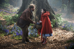 First Look of Into The Woods (2014)