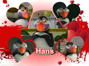 Hans The 퍼핀, puffin