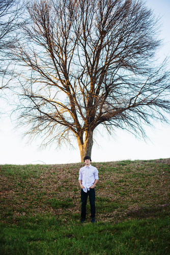 S8rah 壁紙 probably with a live oak titled Hayes Grier Photoshoot ♦