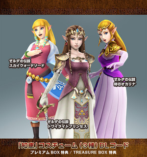 Hyrule Warriors Costume DLC update