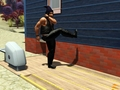Kick the house - the-sims-3 photo