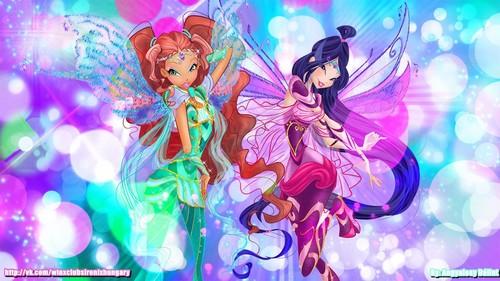 Winx Club wallpaper called Layla / Aisha and Musa Bloomix wallpaper