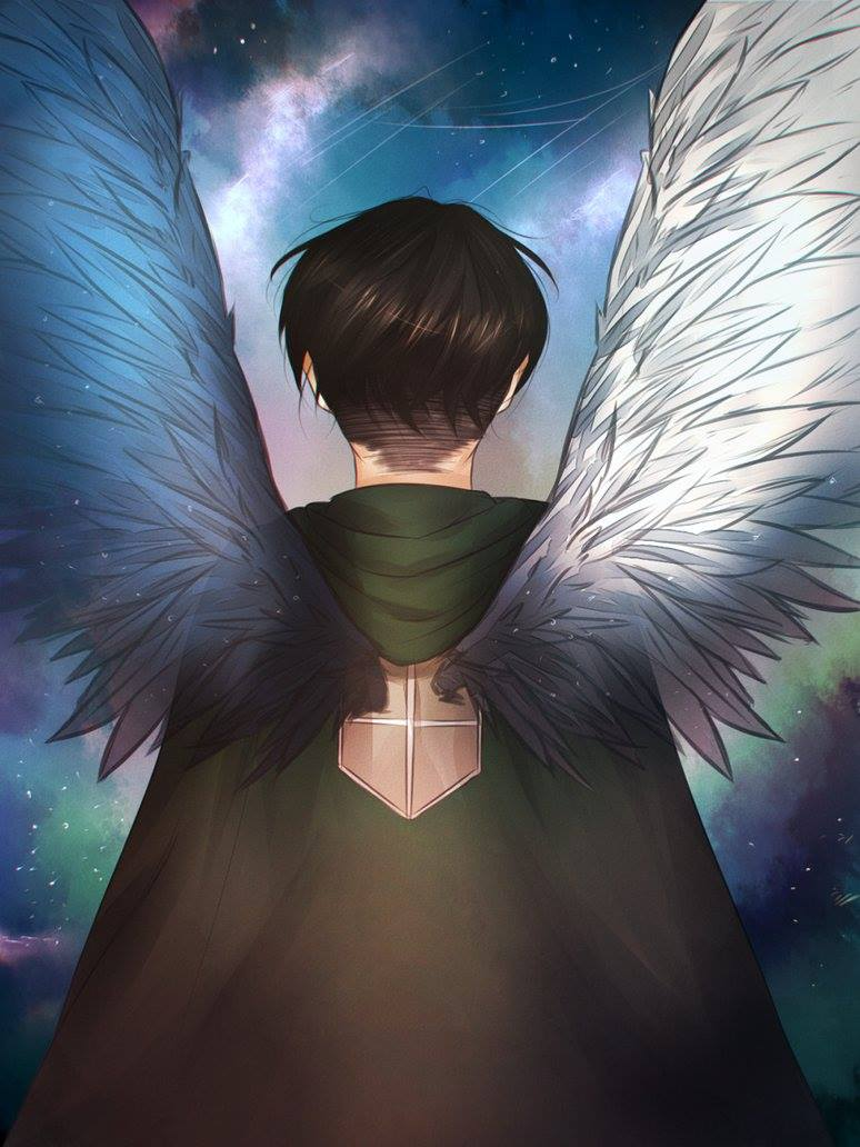 levi ackerman images levi wings of freedom hd wallpaper