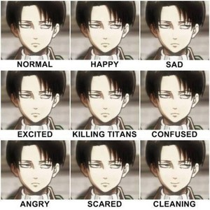 Levi exressions