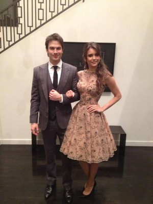 "New/old pic of Nina and Ian at ""The Weinstein Company"" event 2013"