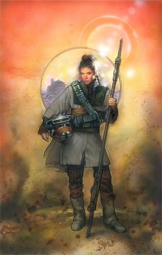 Princess Leia Organa Solo Skywalker wallpaper containing a rifleman titled Princess Leia Organa