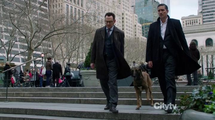 Protectors of New York