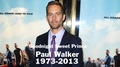 R.I.P. Sweet Prince - paul-walker photo