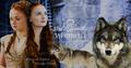 Sansa Stark/Alayne Stone