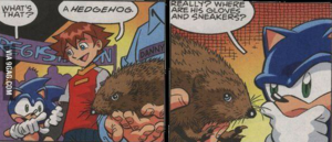 Sonic sees a real hedgehog XD