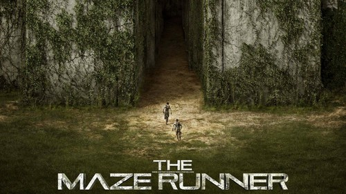 The Maze Runner 바탕화면 entitled The Maze Runner 바탕화면