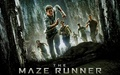The Maze Runner kertas dinding