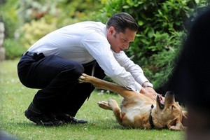 Tom Hardy on Set of Legend with His Dog 'Woodstock'(Woody)