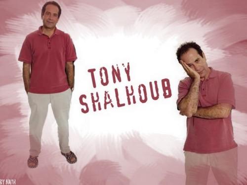 Tony Shalhoub wallpaper entitled Tony Shalhoub