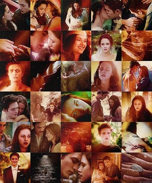 Twilight Saga collage