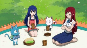 Wendy Marvell, Erza Scarlet, Happy, and Carla