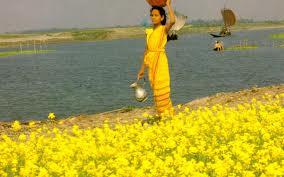 beauti of bangla