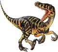 raptor12432 - dragons photo