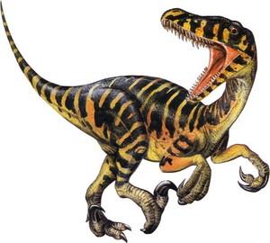 raptor12432