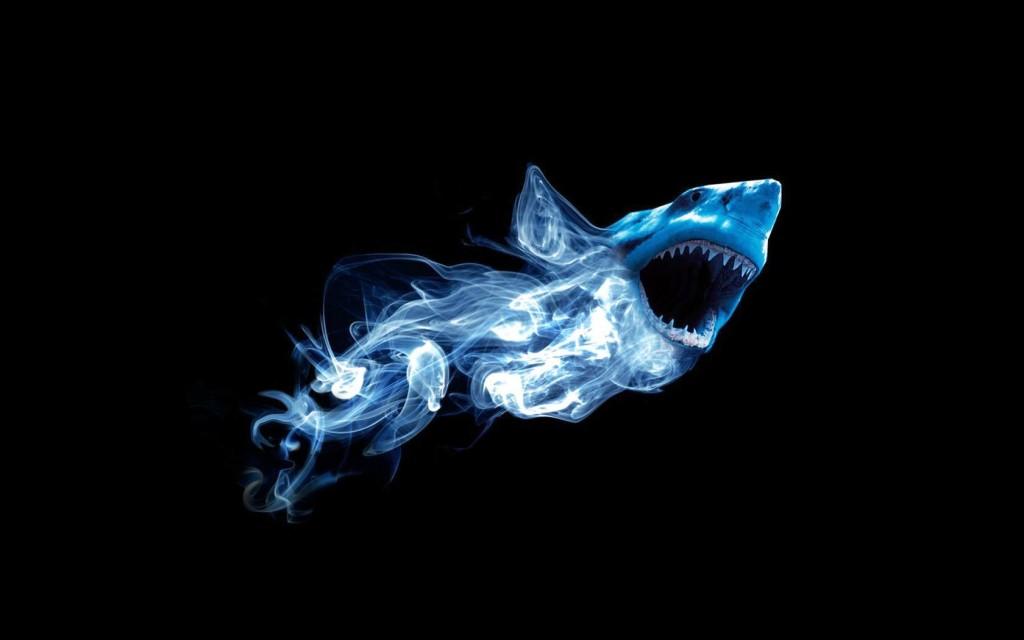 shark123423