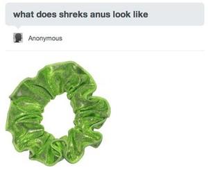 shrek's anus
