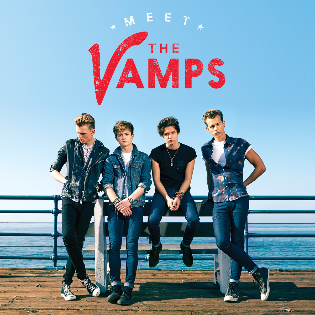 the-vamps-meet-the-vamps-37355625-1200-1200.png