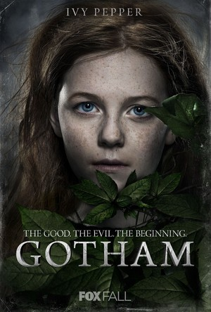 'Gotham' posters