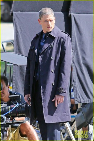 : Wentworth Miller is a silver لومڑی with his new grey hair on the set