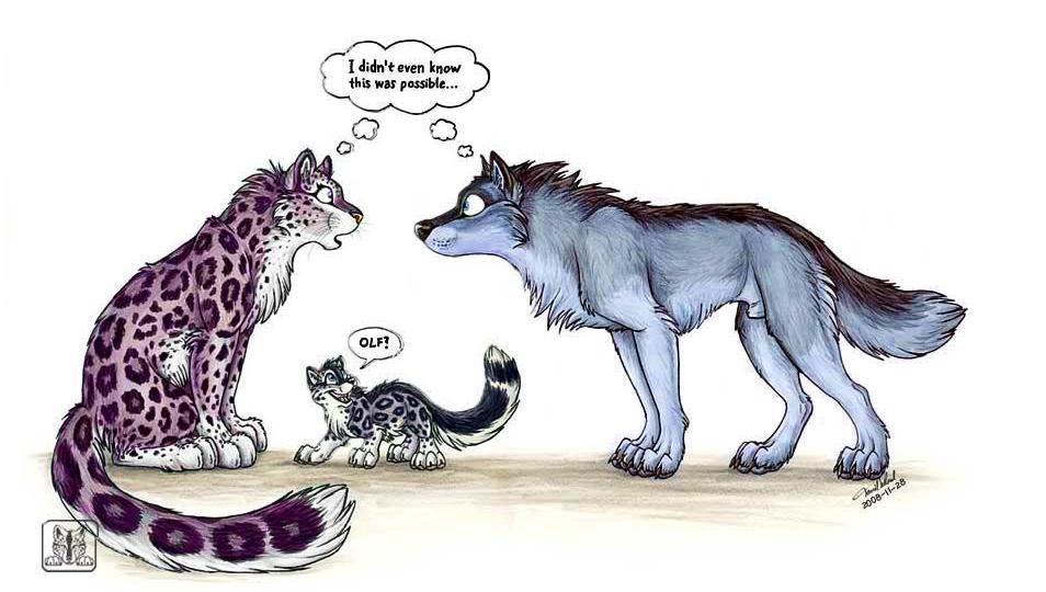 Йифф с драконами