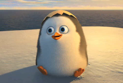 Penguins of Madagascar پیپر وال called BABY PRIVATE