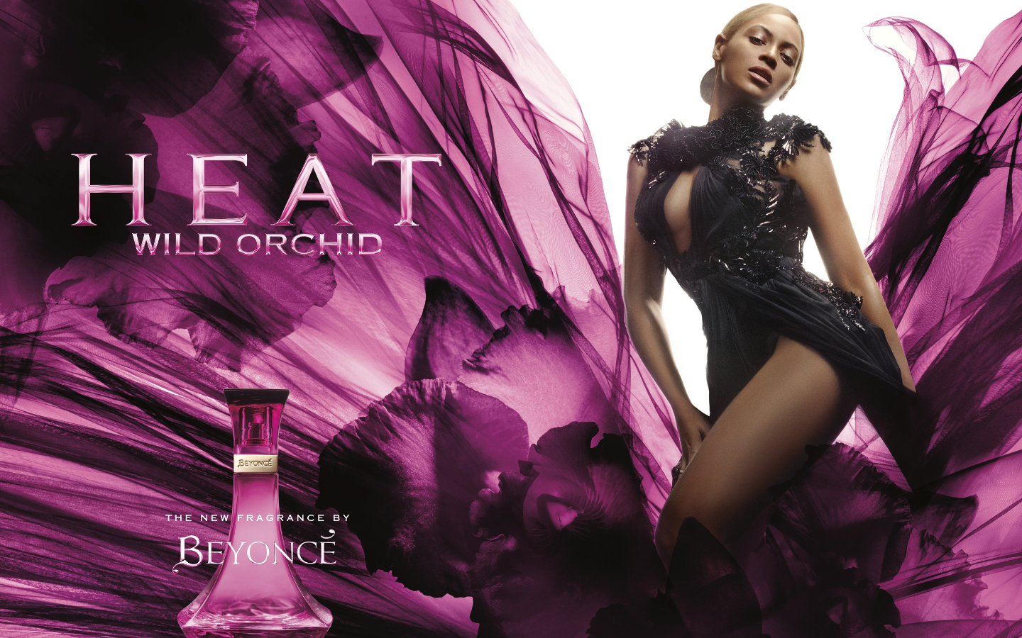 beyonce Heat Wild Orchid promo