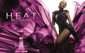 Beyoncé Heat Wild Orchid promo