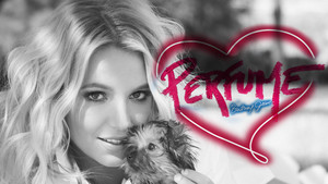 Britney Spears Perfume (Special Edition)
