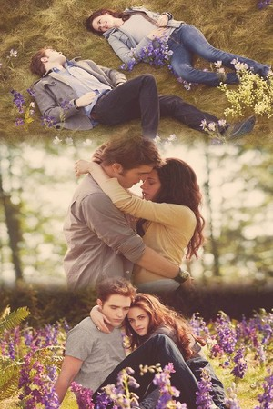 Edward and Bella,Twilight Saga