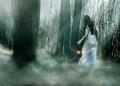 Fantasy Mist