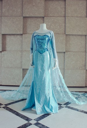 Frozen the snow queen Elsa Cosplay Costume