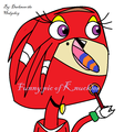 Funny pic of knuckles - knuckles-the-echidna fan art