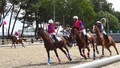 france - Horseball Championnat wallpaper