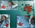 I love Johnny Depp - johnny-depp wallpaper
