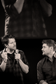 Jensen Ackles and Misha Collins  - jensen-ackles photo