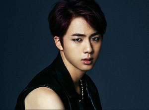 Jin 'Dark and Wild' concept चित्र
