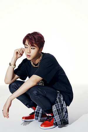 Jin 'Dark and Wild' concept 写真