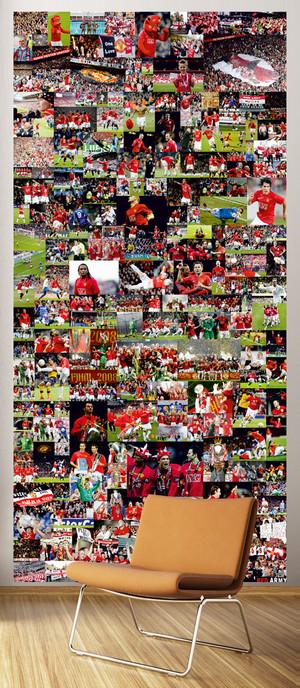 MANCHESTER UNITED F.C. SEASON 2009-2013