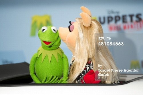 The Muppets wallpaper possibly containing a portrait titled Miss Piggy and Kermit