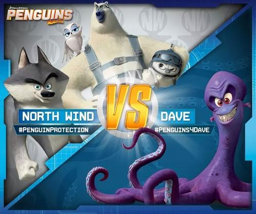 पेंग्विन्स ऑफ मॅडगास्कर वॉलपेपर entitled North Wind Vs. Dave.