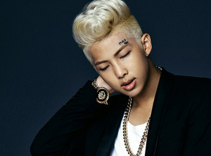 Rap Monster 'Dark and Wild' concept foto