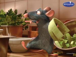 Ratatoile