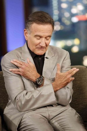 Robin Williams (2013)
