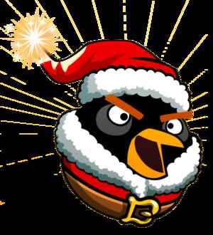Santa Black Bomb Bird
